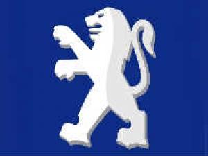 ఎపి లేక టిఎన్: ప్లాంటు ఏర్పాటుపై పియోజియోట్ అయోమయం